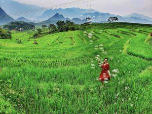 Nhanh chân lên bạn ơi, kẻo bỏ lỡ mùa thu ở Pù Luông – Thanh Hóa