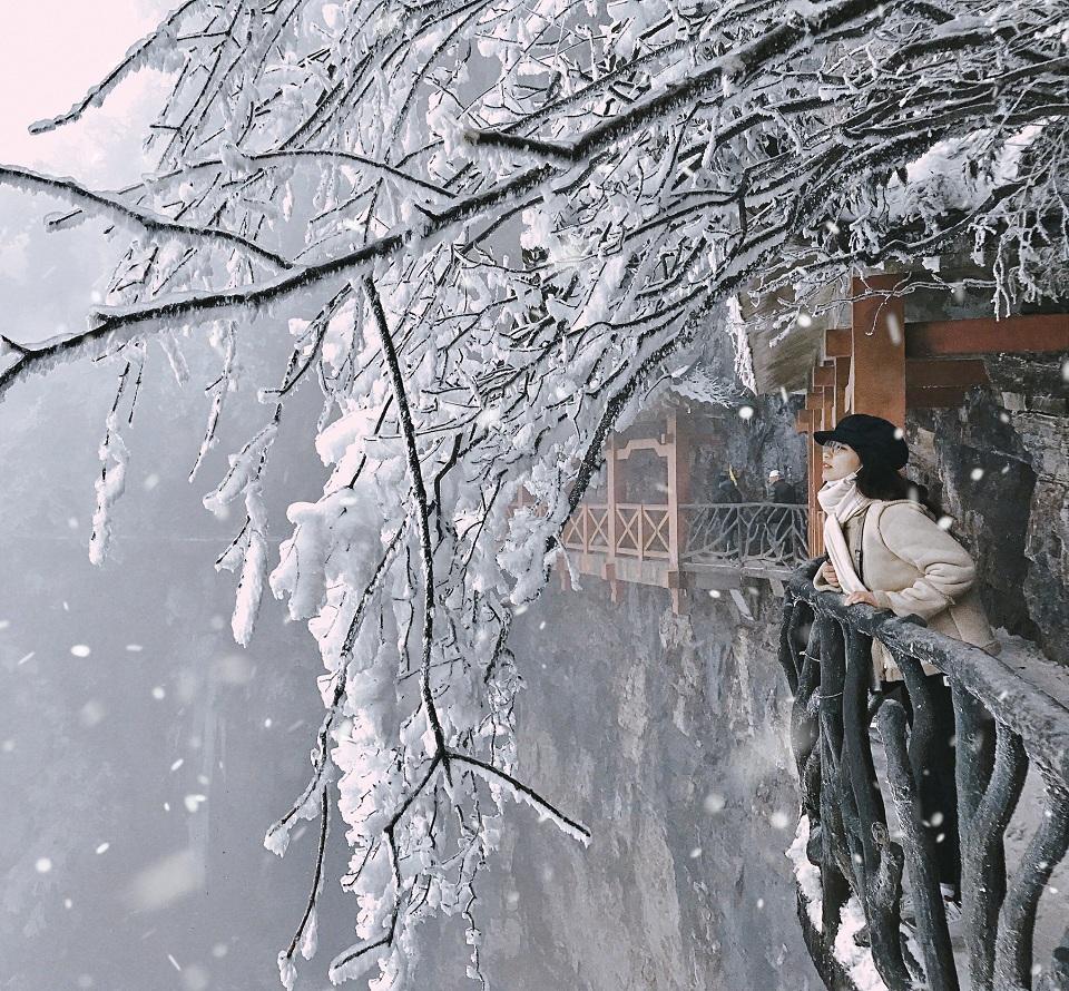 Giấc mơ tuyết trắng ở Trương Gia Giới