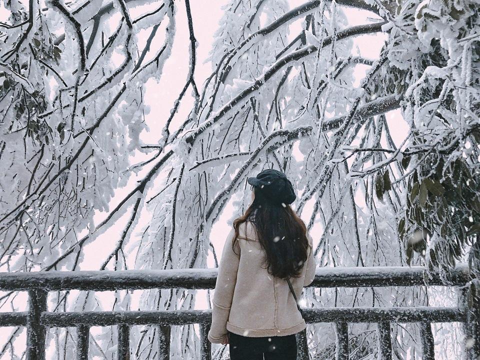 Tuyết tại Trương Gia Giới