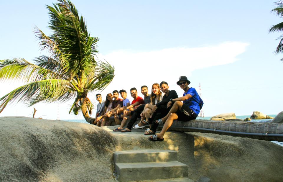 cây dừa nghiêng đảo hòn Sơn