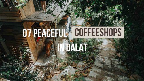 7 trạm cà phê bình yên cho một #coffeeaholic ở Đà Lạt